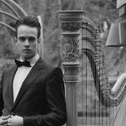 Matt - Online Harp  teacher